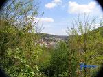 P4110094 Blick von der Hinterburg auf Neckarsteinach im Hessischen Neckartal.