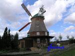 P8261167 Neubukow – Galerieholländermühle