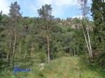 P8170682  in den Bergen über  unserer Hütte in Bjaerum/Norwegen/Vestagder