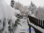 P1030676 Winterimpressionen - Hornburg - Judengasse im Schnee 2009