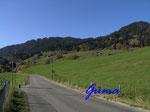 PA221408 Allgäu - Blick von Ofterschwang nach Sigiswang