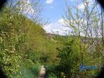 P 4110093 Neckarsteinach im Hessischen Neckartal. Blick von der Hinterburg zur Mittelburg