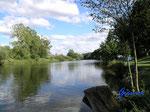 :P66230498 An der Regnitz bei Bamberg - am Campingplatz Insel