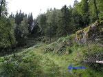 P8210747  In den Bergen über  unserer Hütte in Bjaerum/Norwegen/Vestagder