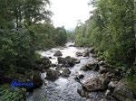 P8230771 Blick auf den Bjaerumsana  in der Nähe  unserer Hütte in Bjaerum/Norwegen/Vestagder