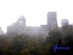 Pa270005 Burgruine Freienfels. Wie ein Fantasiebild - Burg Freienfels im Nebel.