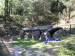 P9021255 Grab E der Sieben Steinhäuser auf dem Truppenübungsplatz Bergen - Osterheide