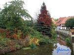 PA080977 Es wird herbstlich an derMühlen-Ilse nahe der alten Wassermühle von 1604  in Hornburg
