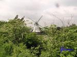 P5300406 Die achteckige Hollländer-Windmühle steht auf einem Rohziegel-Sockel. Sie befindet sich auch heute noch im Besitz und Betrieb der Familie Brüggemann. Seit 1954 arbeitet sie allerdings fast ausschließlich elektrisch.
