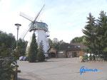 P9190014   An der Sprengeler Mühle zwischen Neuenkirchen und Schneverdingen in der Lüneburger Heide