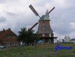 P8261168 Windmühle in Neubukow - Gallerieholländermühle