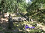 P9021255 Grab D der Sieben Steinhäuser auf dem Truppenübungsplatz Bergen - Osterheide