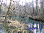 4-41-Pc161110 Rhumequelle am Südharz. Eine der stärksten Quellen Europas mit 5.000 Liter Wasserschüttung je Sekunde. Jeder Einwohner Deutschlands könnte sich hier jeden Tag einen Eimer mit 10 Liter Trinkwasser abholen.