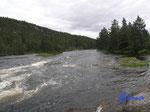 """P8190717  am Fluß bei Ånebjør/4745 Bygland Norwegen/Vestagder mein """"Land der rauschenden Wasser"""""""