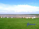 P8260006 Blick auf das Wattenmeer bei Fuhlehörn