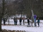 Streuobst-Seminar – Praxis Baumschnitt
