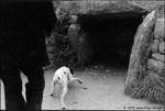 Bretagne, dolmen - 1978