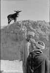Tinerhir - Maroc - 1980