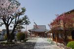 淀川区加島の富光寺