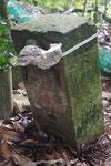 角柱型の丁石