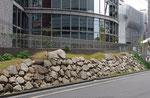 道路西側の石垣