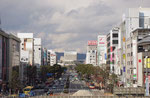 姫路駅からの白鷺城