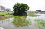 池の中の道路痕跡(西から)