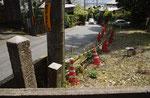 大乗寺付近の道標、街道の南方向を見る