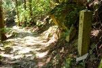 九丁付近の登山道