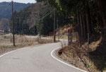 長沢地区の街道筋と並び松
