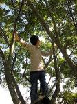 木登りもできます。