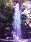 「どこかも不動の滝」小山内愛美さん