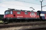 Re 4/4, 11216 (420 216-4 LION), Oberrüti (05.07.2013) ©pannerrail.com