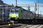BLS Re 485 014-5, Gümligen (23.12.2013) ©pannerrail.com