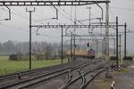 """Re 6/6 11645 """"Colombier"""", Oberrüti (16.04.2012) ©pannerrail.com"""