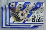 Hertha BSC_1