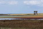 Im Naturreservat Äspet gibt es zwei Beobachtungstürme.