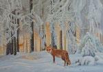 Fuchs im Waldviertel
