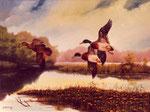 Herbstlandschaft mit Enten