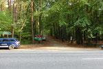 Der Waldweg zum Vereinsgelände