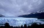 Gletscherzunge des Glaciar Perito Moreno © Rosenwirth
