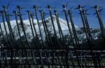 Skigebiet von Vetriolo Therme, Lagorai © Rosenwirth