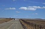 Einsame Begegnung auf der Ruta 40, Argentinien © Rosenwirth