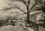 Gerolstein 1953, Fredy Lange (Bildrechte Ernst Mittler)