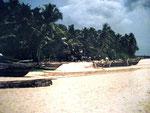 Strand in Hikkaduwa
