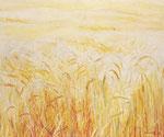 Campo di grano (1978)