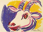 Album con studi di capra