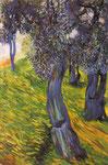 Vecchi olivi