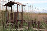Delta de l'Ebre : un observatoire de la faune
