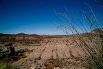 "unser erster ""glimpse"" vom Rio Grande (bzw. Rio Bravo)"